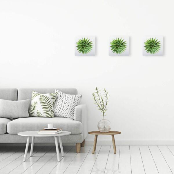 elementi decorativi realizzati in ceramica quadrati rappresentanti l'immagine vista dall'alto di un agave.